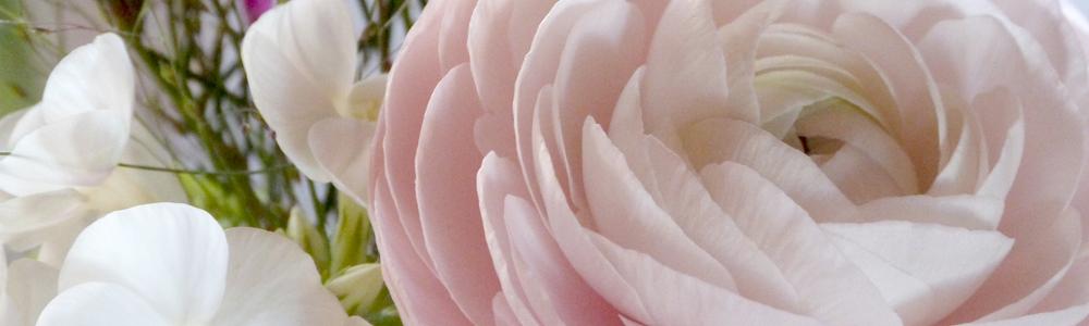 composition et bouquet de fleur